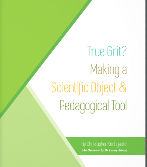 True Grit? Making a Scientific Object and Pedagogical Tool